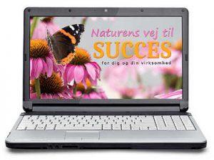 webinar om online forløb i balance mellem feminine værdier og maskuline værdier