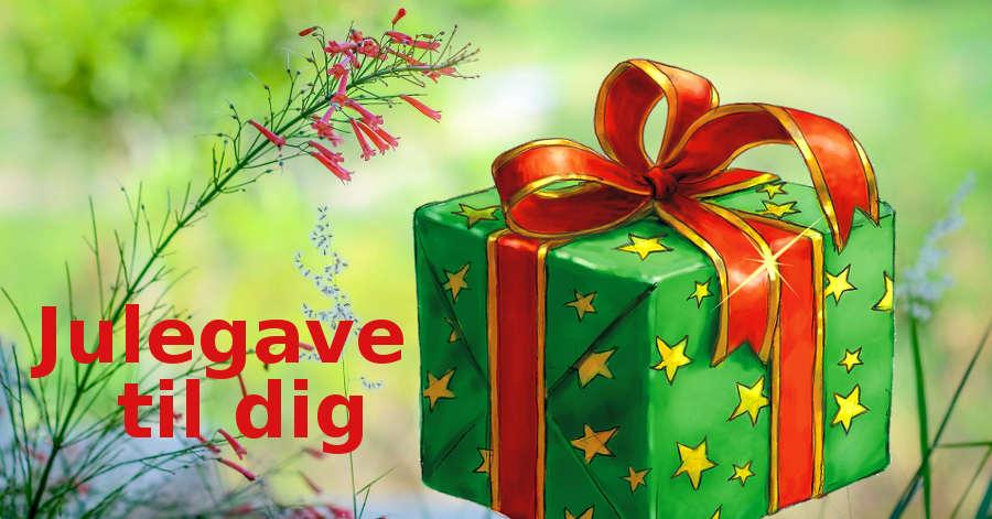 Julegaver til at skabe gode rammer for 2017
