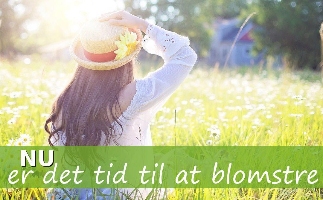 Skal 2019 være året hvor du giver dig selv næring, så du kan blomstre?