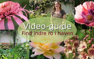 Find indre ro i haven med mindfulness og fordybelse i sanser, skønhed og årets gang