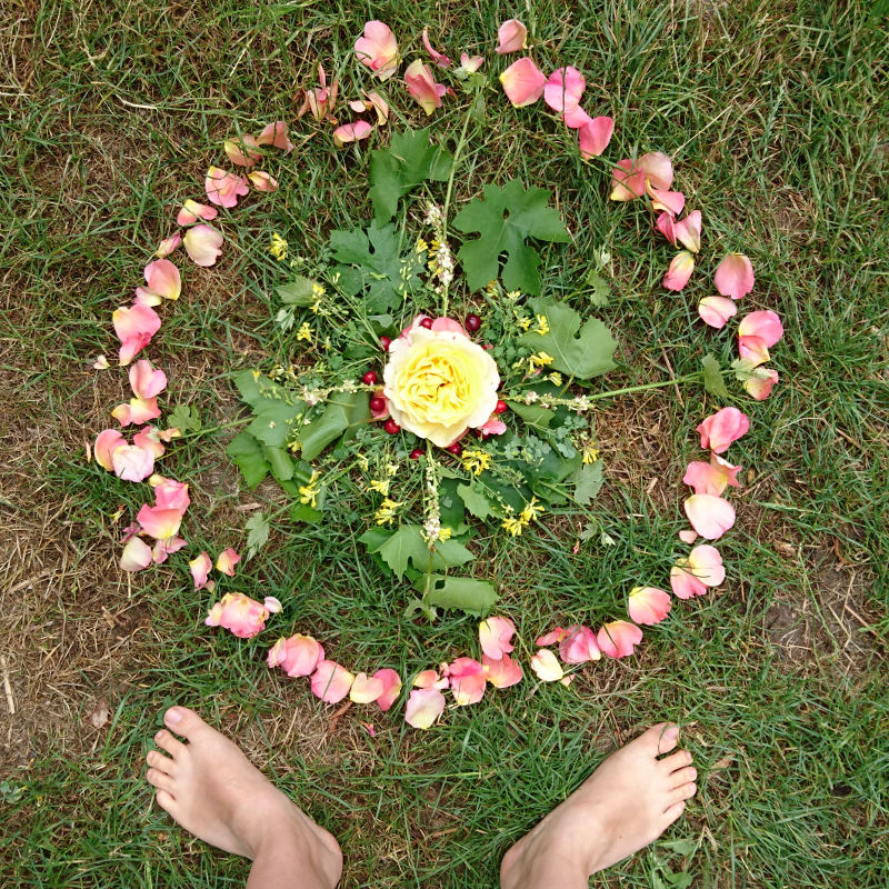 Mandala af blomster fra have til fejring af sommersolhverv