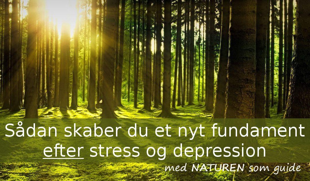 Sådan skaber du et nyt fundament efter stress og depression – med naturen som guide